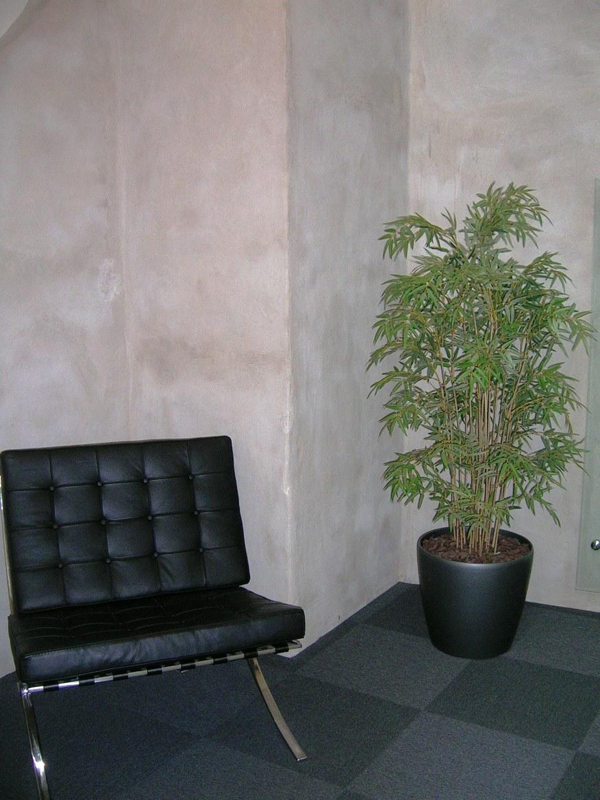 konstväxter